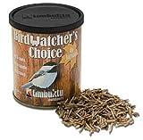 Birdwatcher's Choice: Fly Larvae, 70 g / 2.5 oz, My Pet Supplies