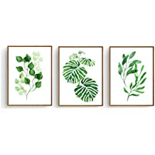 Hepix Framed Canvas Wall Art Tropical Leaves Drawing for Home Decorations 13 x 17 inch (Tropical Leaves Group A)