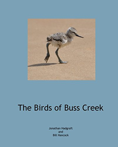 Download The Birds of Buss Creek pdf epub