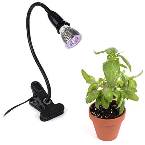 Fluorescent Garden Lights