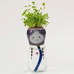 Bonsai decoración del hogar mini DIY Hierba mágica que planta los regalos preciosos creativo cultura Crisol de la planta de oficina Decoración