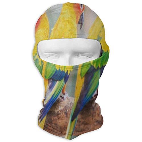 IDO Hipster Conure Parrot Bird Full Face Masks UV Balaclava Hood Ski Sports Cap Motorcycle Neck Warmer Tactical Hood for Cycling Outdoor Sports Snowboard (Batman Contact Lenses For Eyes)