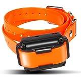 Amazon Com Remote Control Dog Training Shock Collar For
