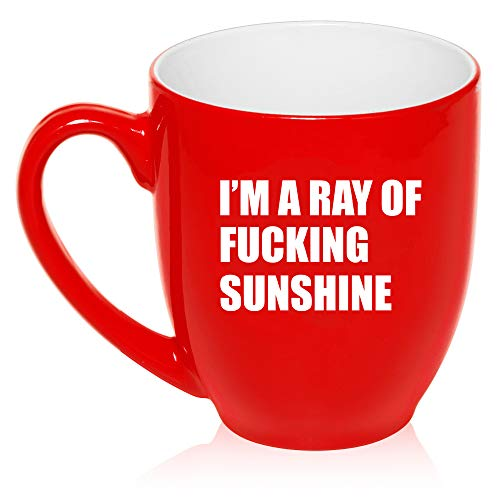 16 oz Large Bistro Mug Ceramic Coffee Tea Glass Cup I'm A Ray Of Fcking Sunshine Funny -