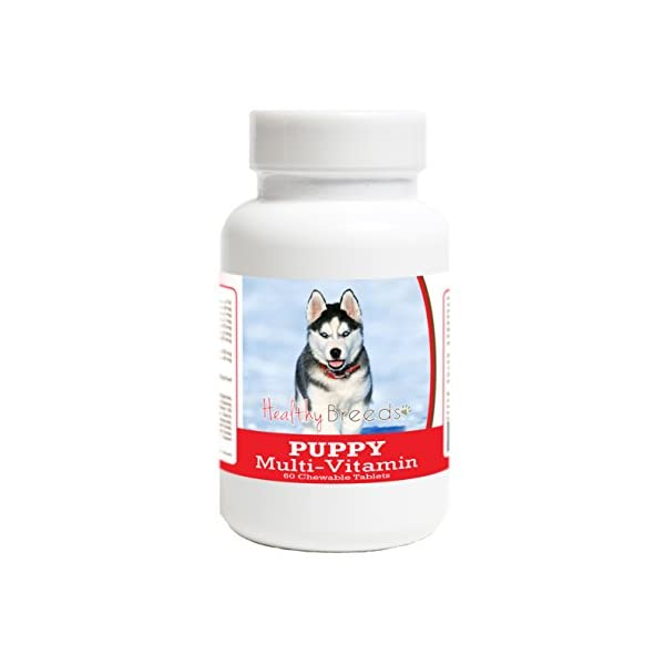Healthy Breeds Puppy Multivitamin Chewable Tablets - Veterinarian Formulated Daily Dietary Supplement - Over 100 Breeds - Tasty Liver Flavor - 60 Chews 1