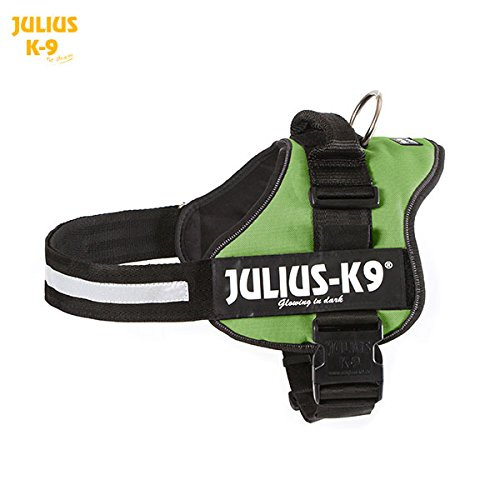 Julius K9 Powerharness 1 Kiwi Green product image