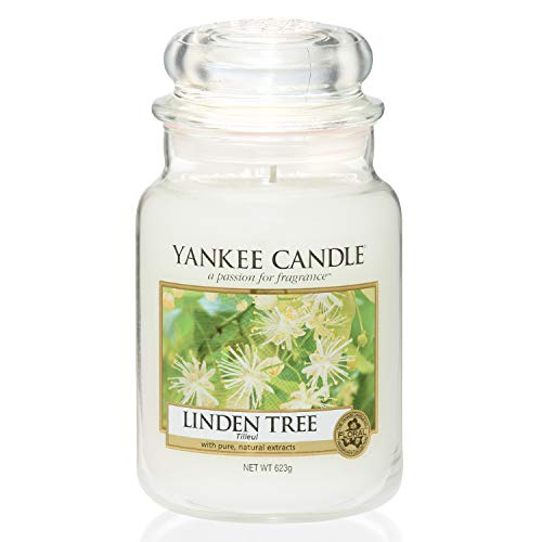 Yankee Candle Large LINDEN TREE Jar Candle - European Exclusive