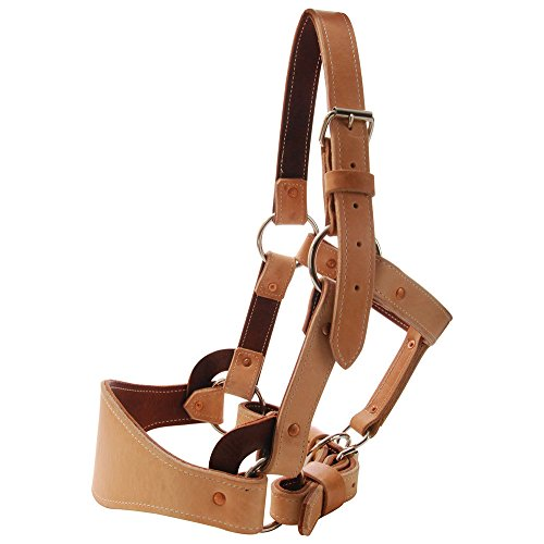 Saddle Barn Tack Leather Bronc Halter for sale  Delivered anywhere in USA