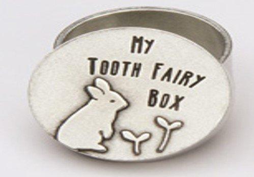 Tooth Fairy Box to Put On Tooth Fairy Pillow Keepsake