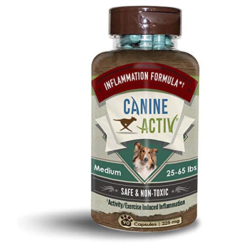 CANINE ACTIV Mobility Supplement for Dogs for Exercise and Activity Induced Inflammation, Medium Breed, 90 ct