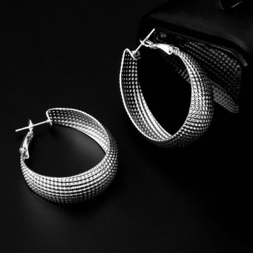 Alicenter(TM) Women Sterling Stainless Steel Silver Plated Hoop Round Earring Best Jewelry