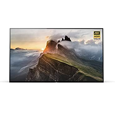 Sony XBR-55A1E 55 4K Ultra HD Smart Bravia OLED TV (2017 Model)