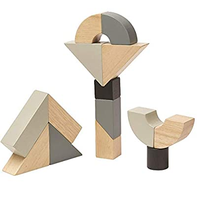 PlanToys 8 Piece Wooden Twisted and Transforming Block Building and Construction Set (5508) |Sustainably Made from Rubberwood and Non-Toxic Paints and Dyes: Toys & Games