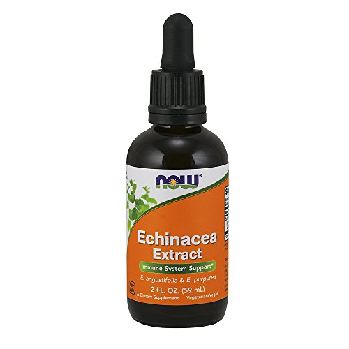Foods Echinacea - NOW Echinacea Extract Liquid,2-Ounce