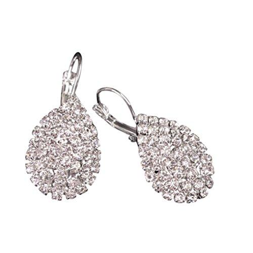 DENER Women Girls Ladies Crystal Rhinestone Ear Clips Stud Hoop Dangle Drop Earrings Eardrop (Silver) -