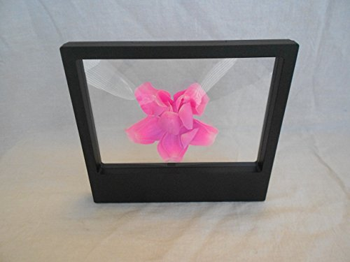 3D Display Floating Frame, Display Case, Shadow Box, Excellent for Jewelry, Shells, Stones, Coins, Flowers collected (Big, Black) by JD PRIME