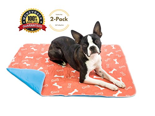 Reusable Housebreaking Pad (Washable & Reusable Pee Pads for Dogs - Puppy Training - Lg 2 Pack (31x35) - For Housebreaking, Incontinence, Training, Whelping & Travel - Fast Absorbing & Waterproof!)
