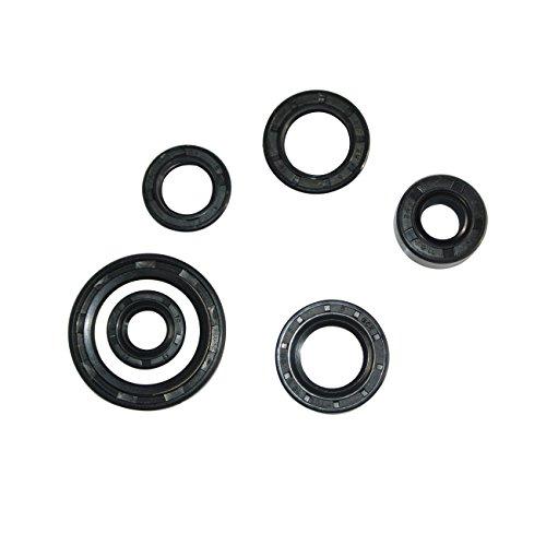 JRL Oil Seals Kit For DY100 Crank Stator 50cc 70cc 90cc 110cc Engine Pit Dirt Bike (Best Oil For Pit Bike Engine)
