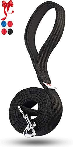 PetsLovers 2-Layer Dog Leash - Sturdy Nylon Strap, Padded Handle - 6 Feet Long, 1 Inch Wide