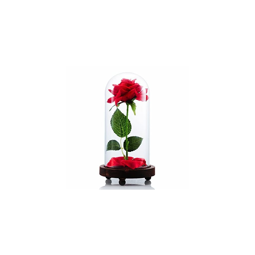 VGIA-Beauty-and-The-Beast-Artificial-Silk-Rose-in-Glass-Dome-on-a-Wooden-Base-Gift-for-Valentines-Day-Anniversary-Birthday