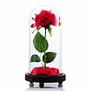 """VGIA """"Beauty and The Beast Artificial Silk Rose in Glass Dome on a Wooden Base Gift for Valentine's Day Anniversary Birthday 2"""