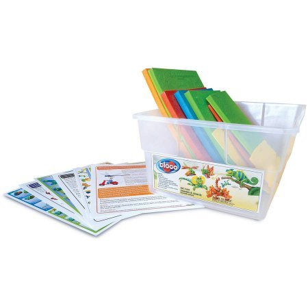 Bloco Insects and Lizards Scholastic Set - Bloco Lizards