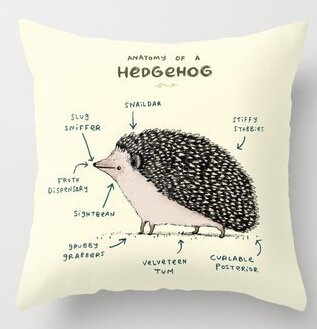 UniqueType Hot Pillow Funny Anatomy Of A Hedgehog Square Zippered Soft Best Pillowcase Throw Pillow Case Cover