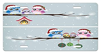 Amazon com: Ambesonne Christmas License Plate, Owl Family