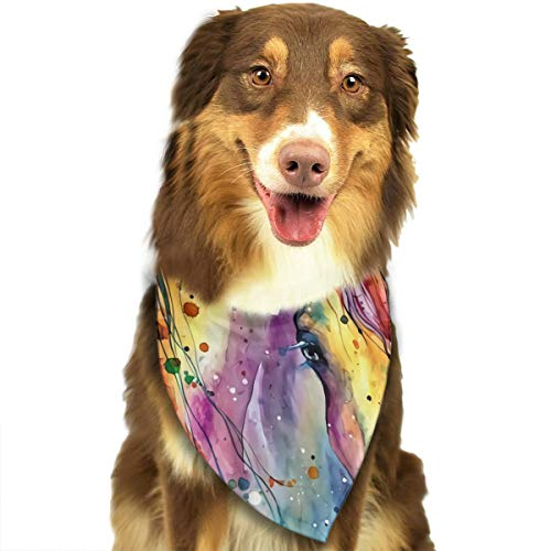 Hlinksy Colorful Watercolor Horse Painting Triangle Bandana Scarves Accessories for Pet Cats and Dogs - Gifts ()