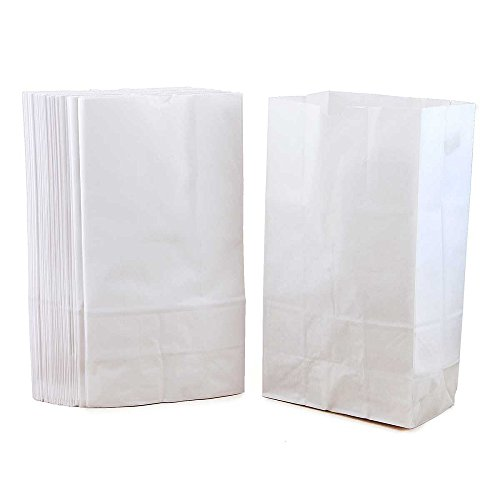 Paper Bottom Flat Bags (Hygloss Products Gusseted Flat Bottom Kraft Lunch Paper Bags - 8-3/16 x 2-1/4 x 4-1/4 Inch, White, 100 Pack)