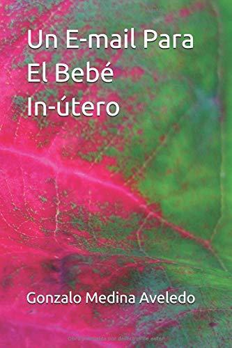 Un E-mail Para El Bebé In-útero  [Medina Aveledo, Gonzalo] (Tapa Blanda)