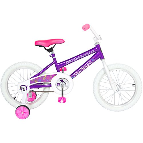 BCP 16'' Girl's Purple Princess Bike W/ Training Wheels & Basket Kid's Bicycles by Best Choice Products (Image #1)
