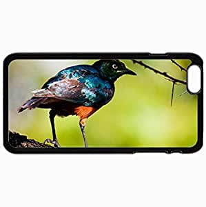 New Fashion Case Customized Cellphone case cover Back Cover For iphone 6 4.7, protective Hardshell 3AyGx1GrRm case cover Personalized Bird Black