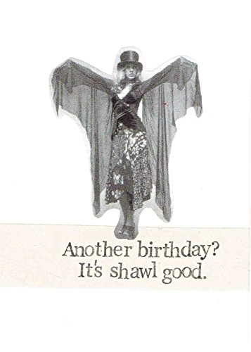 It's Shawl Good Stevie Nicks Classic Rock Music Humor Funny Birthday Card ()