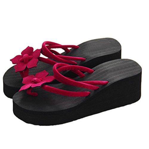 Aurorax Women's Girls Wedge Sandals, [Spring Summer Leisure Flower Non-Slip Platform High Heels Slippers] Bohemia Shoes Caserta Sandals For Beach Party (Red, 39/US:8.5)