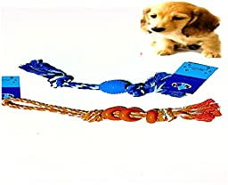 Yummy Paws- Dog Rope Toy Braided Rope with Rubber Bone/Ball, Puppy Chew Toy, Tug Of War, Fetch Teething Dental Chew Pack (Colors/Shapes May Very) by Yummy Paws