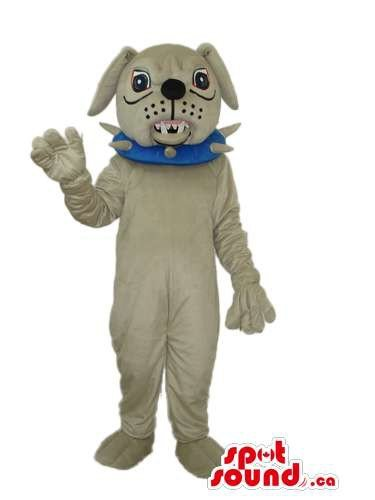[Angry Grey Bulldog Mascot SpotSound US Dressed In A Blue Studded Collar] (Blue Bull Mascot Costume)