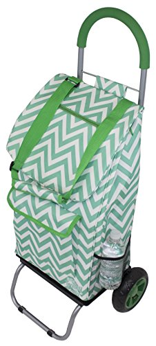 Green Dolly Bag - 1