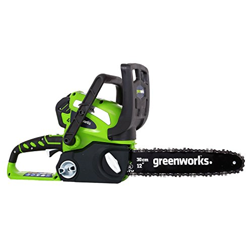GreenWorks 20262 G-MAX 40V 12-Inch Cordless Chainsaw, 2AH Battery and a Charger Included