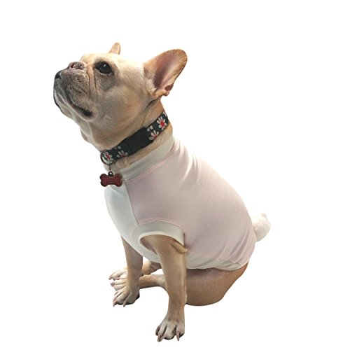 Pink Easter Bunny Knit Shirt - Girl Dog Costume - Clothes for French Bulldogs Size Medium (25lbs - (Frenchie Costumes)
