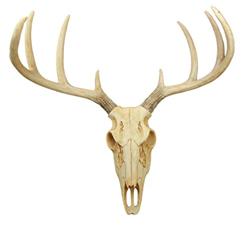 Atlantic Collectibles Rustic Hunter Deer 8 Point Buck Skull Antler Rack Wall Mounted Plaque Trophy Decor Figurine 14.25″ Long For Sale