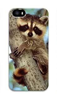 Baby Raccoon 001 Iphone 5 5S Hard Protective 3D Cover Case by Lilyshouse