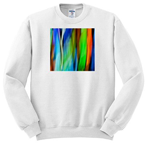 Price comparison product image 3dRose Danita Delimont - Abstracts - A Motion Blur Of a Stain Glass Window. - Sweatshirts - Youth Sweatshirt Small(6-8) (SS_276400_10)