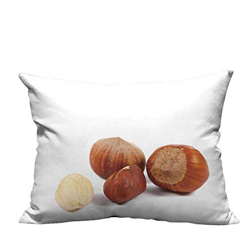 YouXianHome Household Pillowcase Hazelnuts Isolate on a White backgroun Perfect for Travel(Double-Sided Printing) 20x35.5 ()
