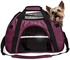 1a6c2ac289 The 50 Best Dog Backpacks and Carriers of 2019 - Pet Life Today
