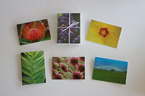 Hawaii-Inspired Note Cards With Envelopes — Photographed and Made on Maui (3.5