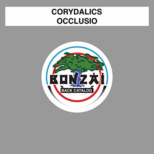 Occlusio  Expeditors Guitar Remix