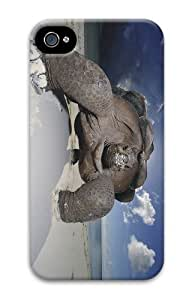 cheap cases tortoise beach PC Case for iphone 4/4S