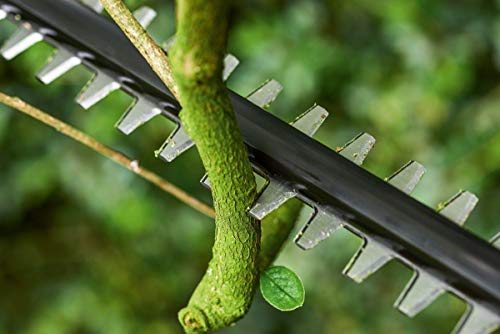 Bosch 06008B3000 UniversalHedgePole 18 Taille-haies télescopique sans-fil, Vert