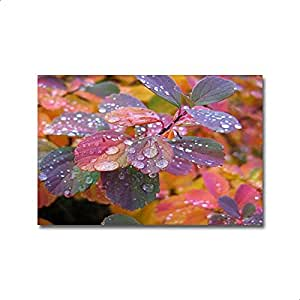 Smile Gallery Modern Tableau - Multicolor, 45x30 Cm - 2724647814612